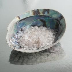 Abalone oplaadschelp bergkristal