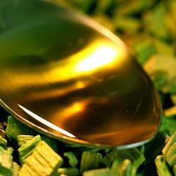 Jojoba-olie biologisch (100 ml)