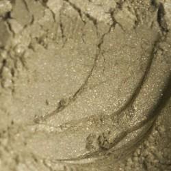 Minerale oogschaduw Litchen