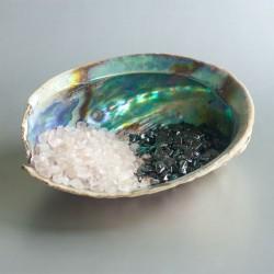 Abalone ontlaad & oplaad schelp