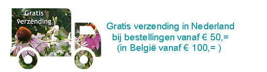 gratis verzending vanaf 50 euro in Nederland (Belgie vanaf 100 euro)